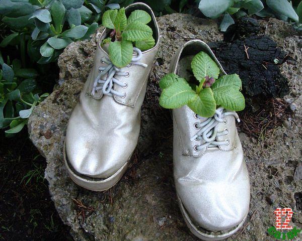 Обуви своими руками на даче 773